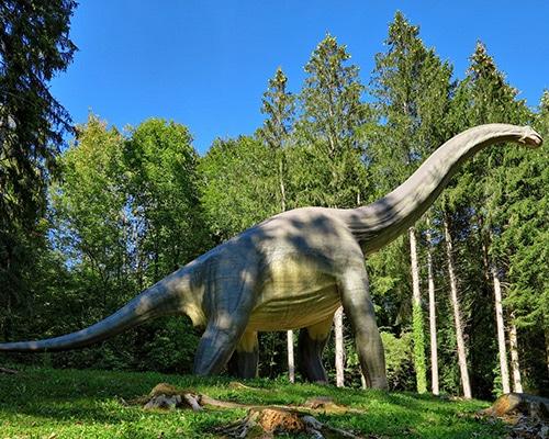 Location de gîte Lac Saint Point vacances dans le haut Doubs : à découvrir dans la région Dino Zoo